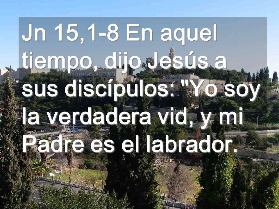 Jn 15,1-8 En aquel tiempo, dijo Jesús a sus discípulos: Yo soy la verdadera vid, y mi Padre es el labrador.
