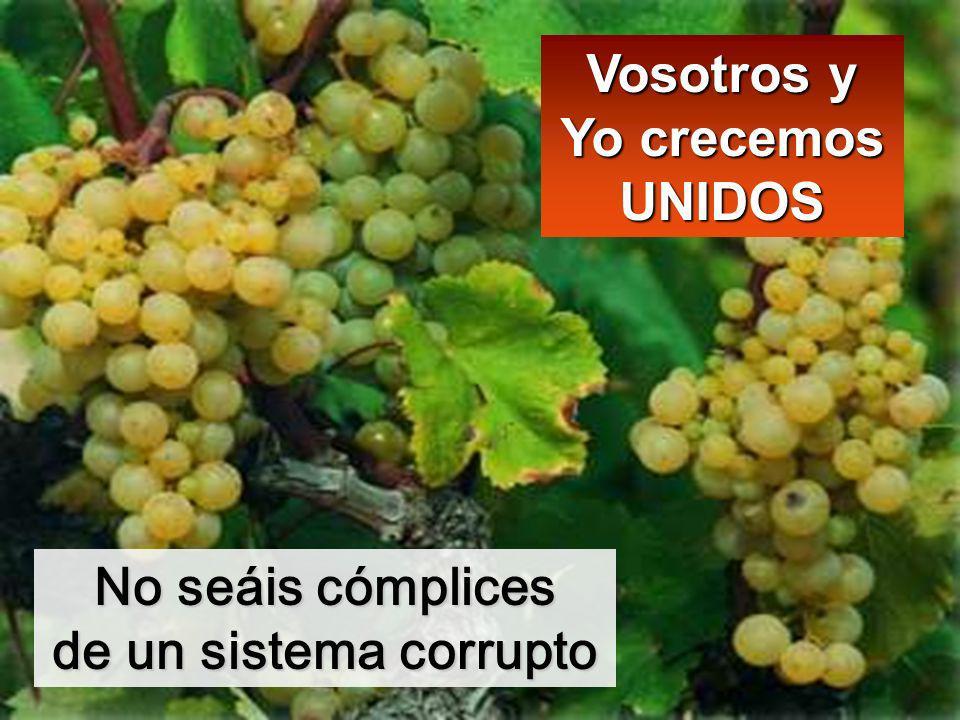 No seáis cómplices de un sistema corrupto Vosotros y Yo crecemos UNIDOS