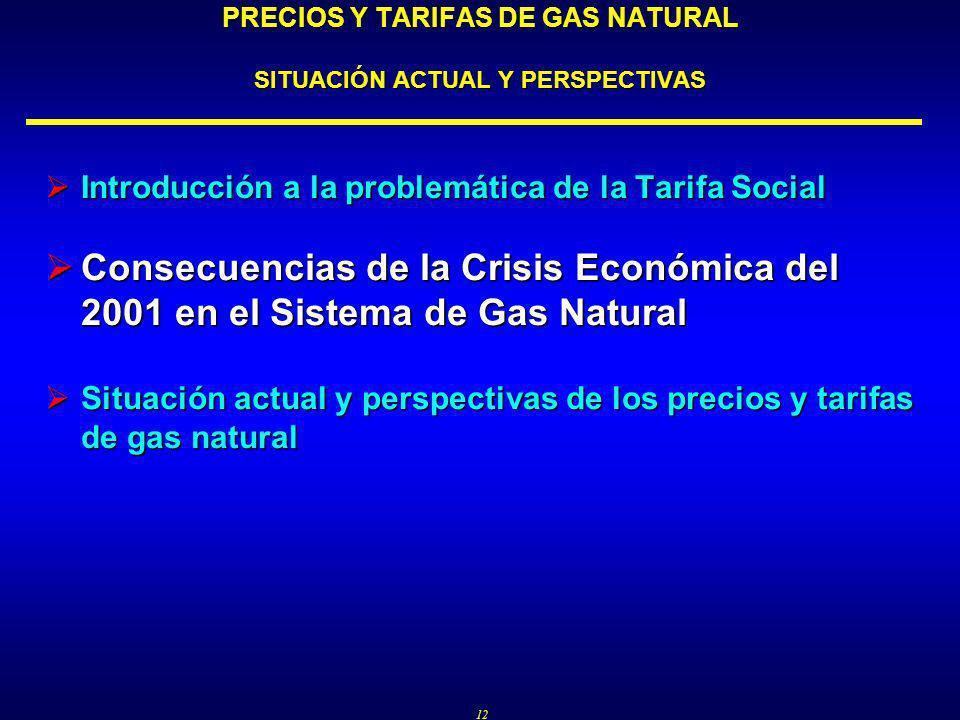 12 PRECIOS Y TARIFAS DE GAS NATURAL SITUACIÓN ACTUAL Y PERSPECTIVAS Introducción a la problemática de la Tarifa Social Introducción a la problemática de la Tarifa Social Consecuencias de la Crisis Económica del 2001 en el Sistema de Gas Natural Consecuencias de la Crisis Económica del 2001 en el Sistema de Gas Natural Situación actual y perspectivas de los precios y tarifas de gas natural Situación actual y perspectivas de los precios y tarifas de gas natural