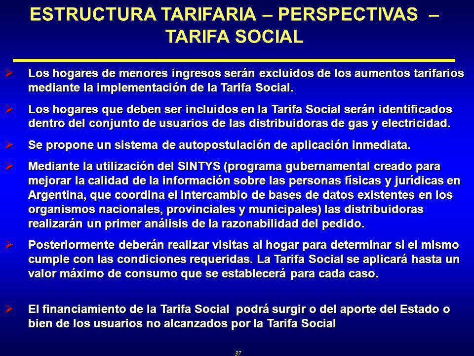 37 ESTRUCTURA TARIFARIA – PERSPECTIVAS – TARIFA SOCIAL Los hogares de menores ingresos serán excluidos de los aumentos tarifarios mediante la implementación de la Tarifa Social.