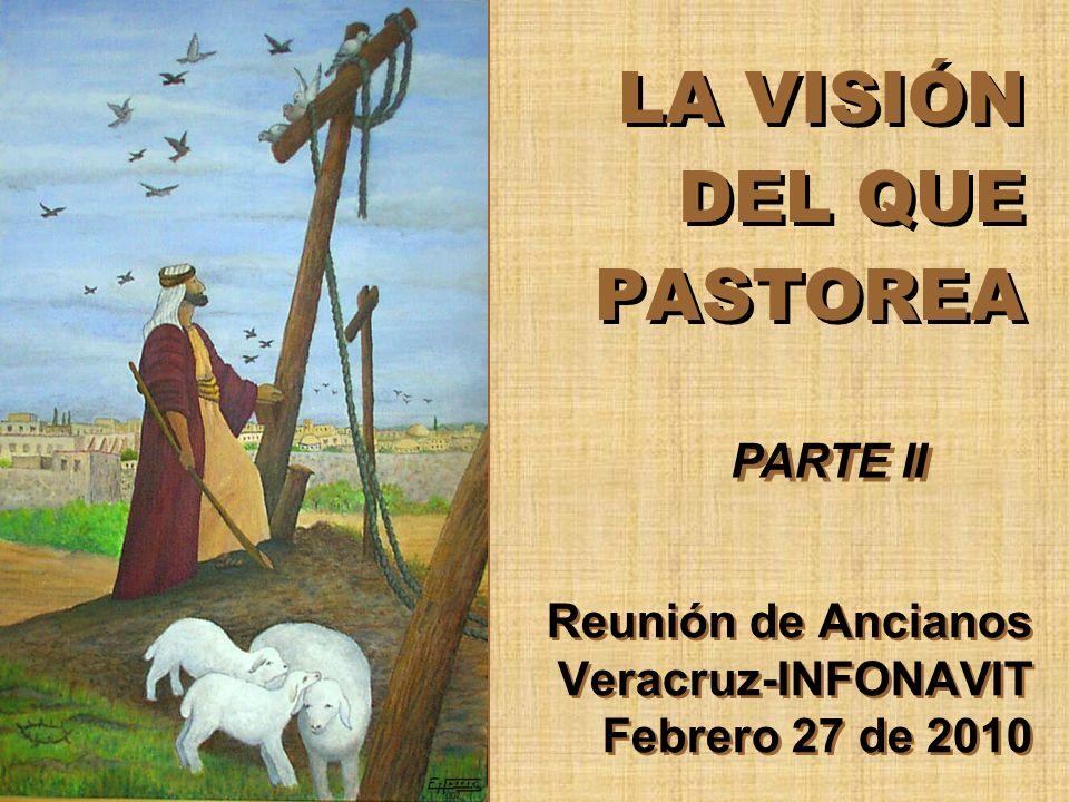LA VISIÓN DEL QUE PASTOREA Reunión de Ancianos Veracruz-INFONAVIT Febrero 27 de 2010 PARTE II