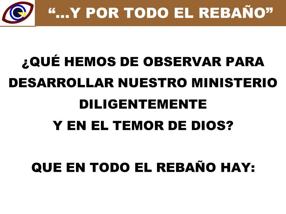…Y POR TODO EL REBAÑO ¿QUÉ HEMOS DE OBSERVAR PARA DESARROLLAR NUESTRO MINISTERIO DILIGENTEMENTE Y EN EL TEMOR DE DIOS.