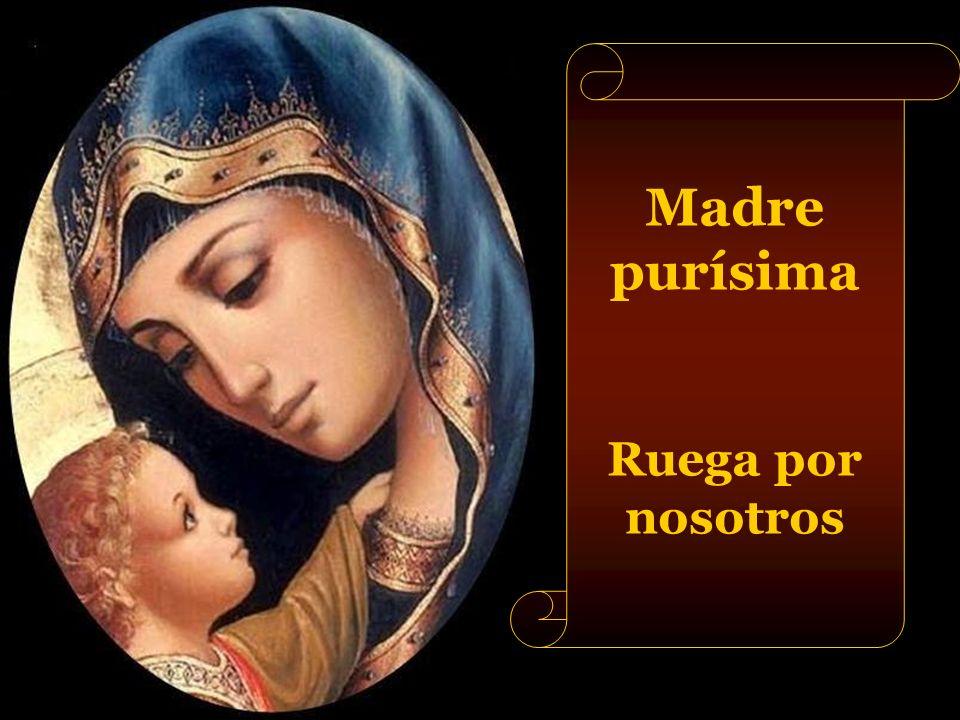 Madre de la divina gracia Ruega por nosotros