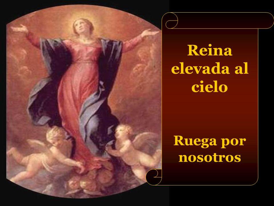 Reina concebida sin pecado original Ruega por nosotros