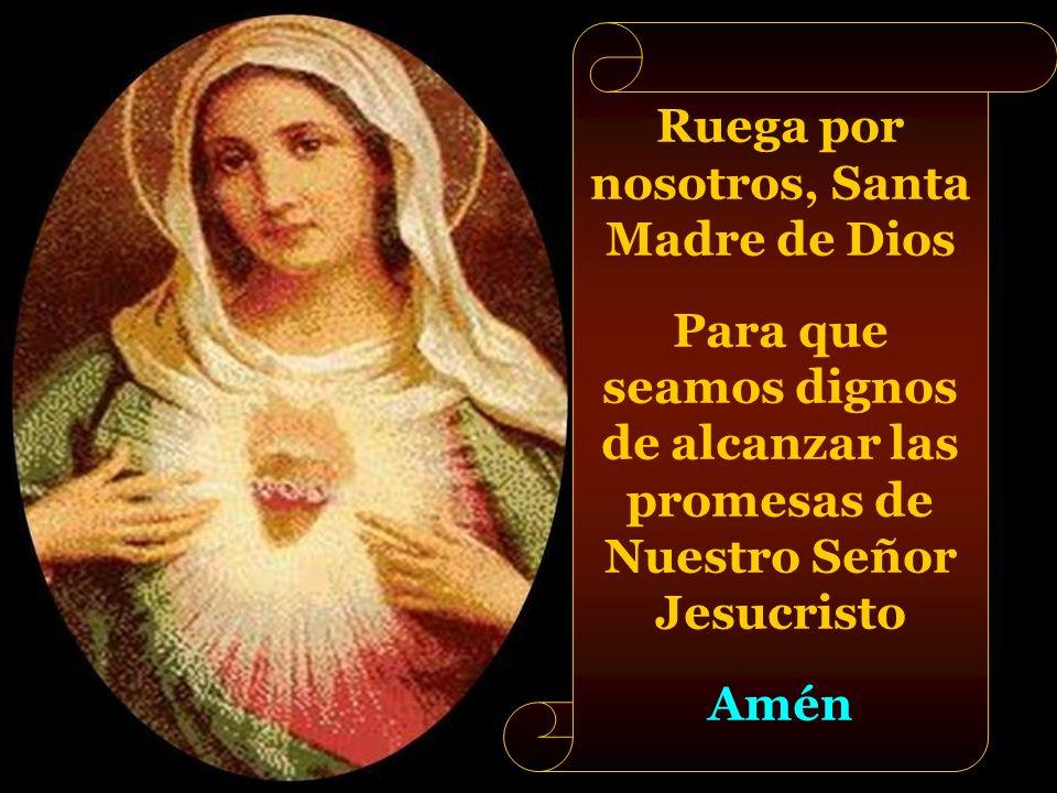 Bajo tu amparo nos acogemos, Santa Madre de Dios. No desoigas nuestras súplicas en las necesidades que te presentamos, antes bien, líbranos siempre de
