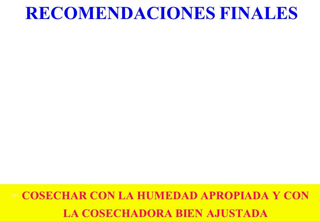 RECOMENDACIONES FINALES F COSECHAR CON LA HUMEDAD APROPIADA Y CON LA COSECHADORA BIEN AJUSTADA