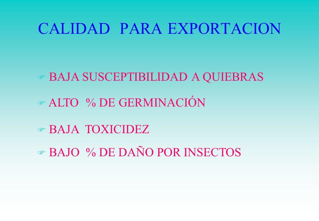 CALIDAD PARA EXPORTACION F BAJA SUSCEPTIBILIDAD A QUIEBRAS F ALTO % DE GERMINACIÓN F BAJA TOXICIDEZ F BAJO % DE DAÑO POR INSECTOS