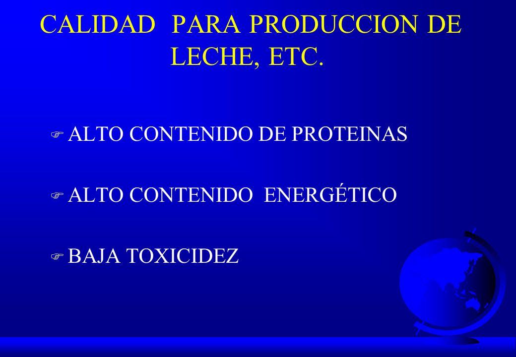 CALIDAD PARA PRODUCCION DE LECHE, ETC. F ALTO CONTENIDO DE PROTEINAS F ALTO CONTENIDO ENERGÉTICO F BAJA TOXICIDEZ
