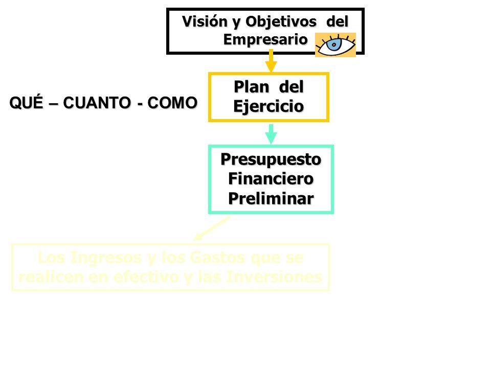 Los Ingresos y los Gastos que se realicen en efectivo y las Inversiones Visión y Objetivos del Empresario PresupuestoFinancieroPreliminar Plan del Eje