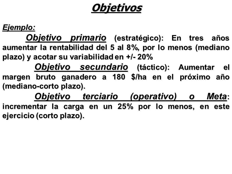 Ejemplo: Objetivo primario (estratégico): En tres años aumentar la rentabilidad del 5 al 8%, por lo menos (mediano plazo) y acotar su variabilidad en