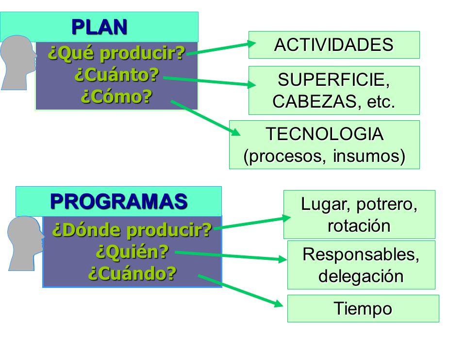 ¿Qué producir? ¿Cuánto? ¿Cómo? ACTIVIDADES SUPERFICIE, CABEZAS, etc. TECNOLOGIA (procesos, insumos) PLAN ¿Dónde producir? ¿Quién? ¿Cuándo? PROGRAMAS L