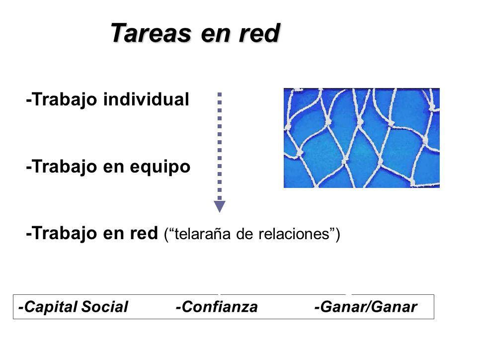 Tareas en red -Trabajo individual -Trabajo en equipo -Trabajo en red (telaraña de relaciones) -Capital Social -Confianza -Ganar/Ganar