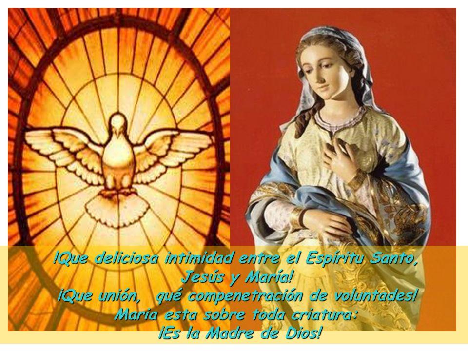 II Del Corazón de María, lleno del Espíritu Santo procedió el Corazón de Jesús, templo del Espíritu Consolador. ¡Qué dos Corazones más parecidos! ¿Cuá