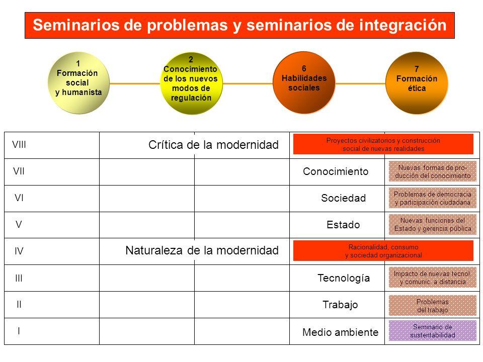 Seminarios de problemas y seminarios de integración VIII VII VI V IV III II I Seminario de sustentabilidad Problemas del trabajo Impacto de nuevas tec