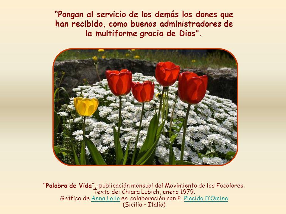El amor recíproco adquiriría tal consistencia, tal amplitud y relieve que con esto podrían reconocer a los discípulos de Cristo.