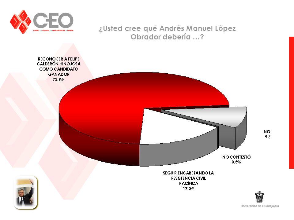 ¿Usted cree qué Andrés Manuel López Obrador debería …?