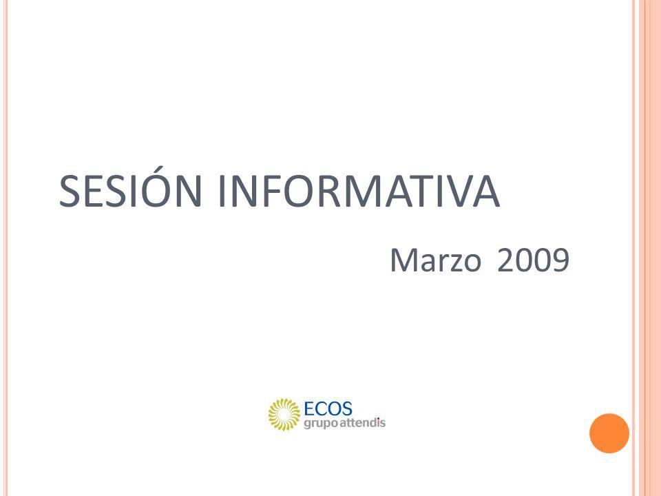 SESIÓN INFORMATIVA Marzo 2009