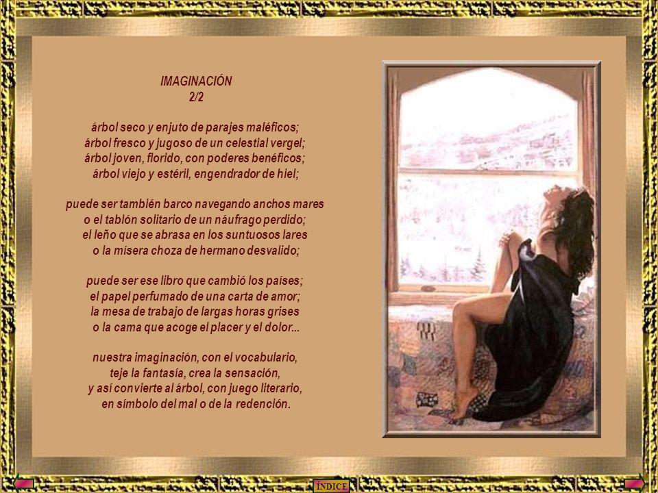 IMAGINACIÓN 2/2 árbol seco y enjuto de parajes maléficos; árbol fresco y jugoso de un celestial vergel; árbol joven, florido, con poderes benéficos; árbol viejo y estéril, engendrador de hiel; puede ser también barco navegando anchos mares o el tablón solitario de un náufrago perdido; el leño que se abrasa en los suntuosos lares o la mísera choza de hermano desvalido; puede ser ese libro que cambió los países; el papel perfumado de una carta de amor; la mesa de trabajo de largas horas grises o la cama que acoge el placer y el dolor...