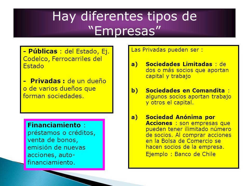 Hay diferentes tipos de Empresas - Públicas : del Estado, Ej. Codelco, Ferrocarriles del Estado - Privadas : de un dueño o de varios dueños que forman