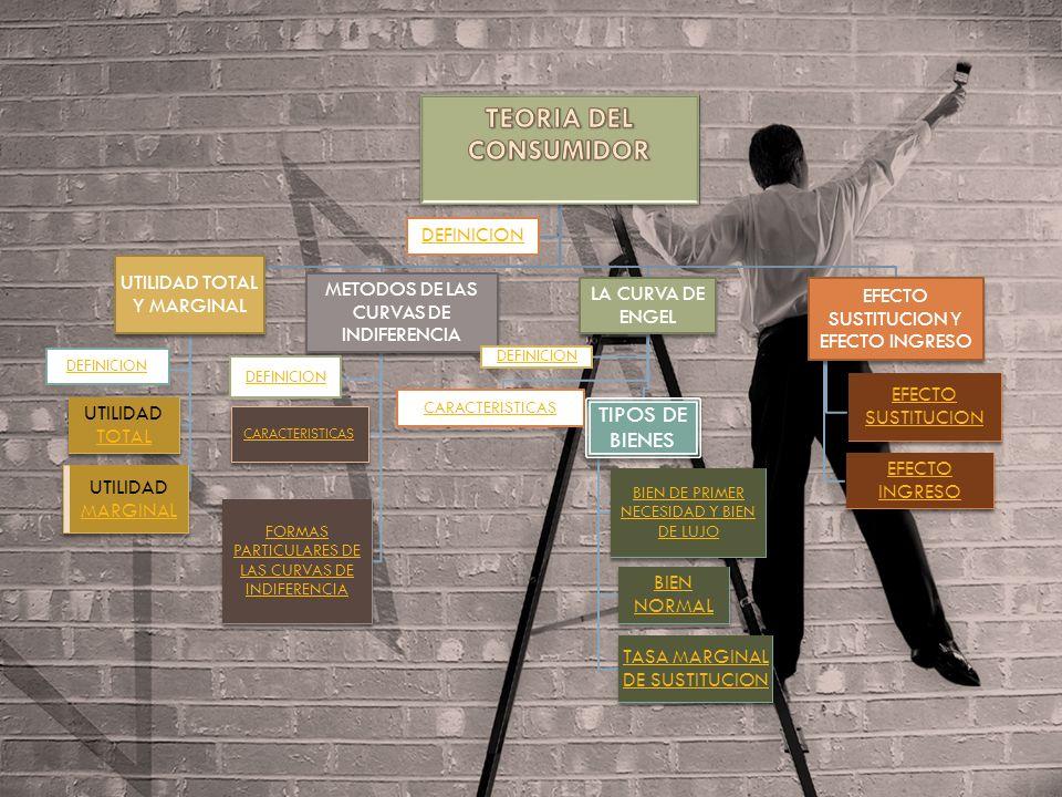 TEORIA DEL CONSUMIDOR La teoría del consumidor forma parte de la microeconomía y se encarga del estudio del comportamiento de los agentes económicos en su carácter de demandante de bienes y servicios.