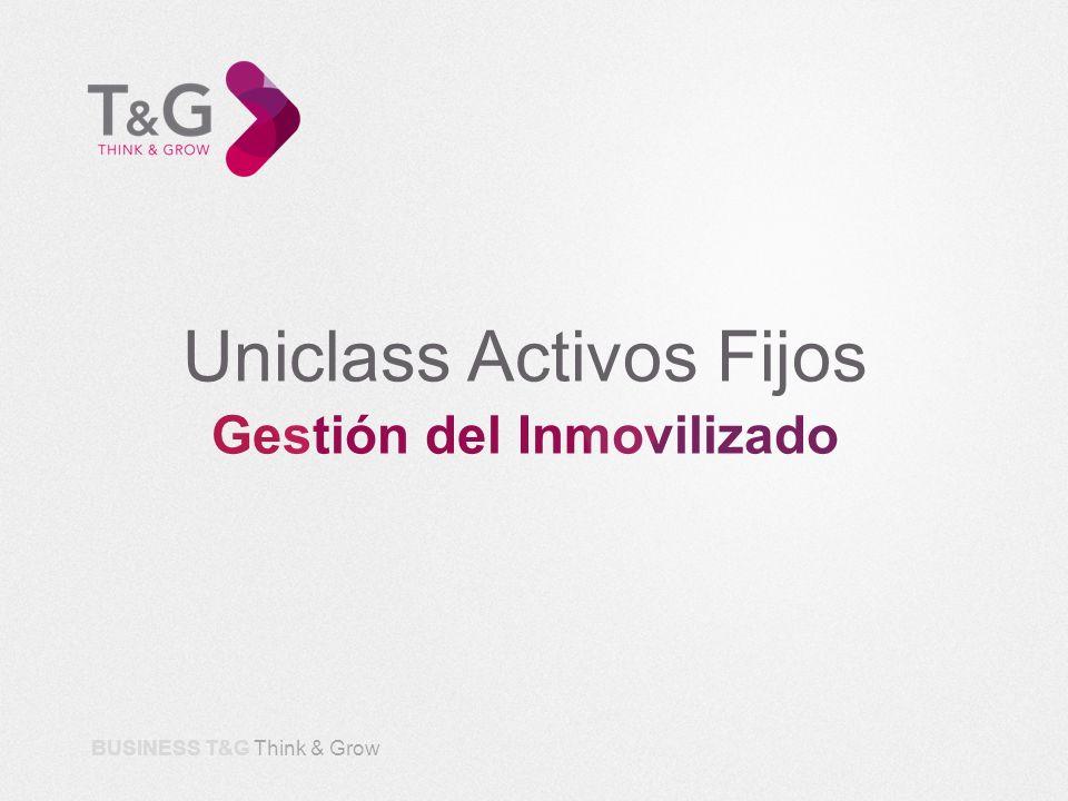BUSINESS T&G Think & Grow Uniclass Activos Fijos es una Aplicación diseñada por expertos en Gestión del Inmovilizado y dirigida a responsables del Área Financiera.