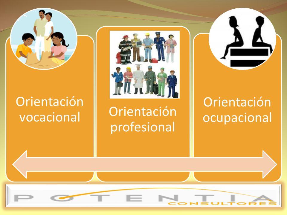 Una profesión no es sinónimo de actividad o de oficio.