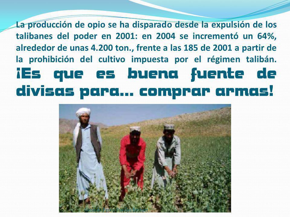 Afganistán generó en 2006 el 92% de la producción mundial ilegal de opio.