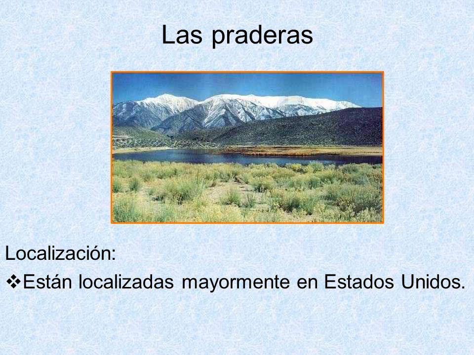 Las praderas Localización: Están localizadas mayormente en Estados Unidos.