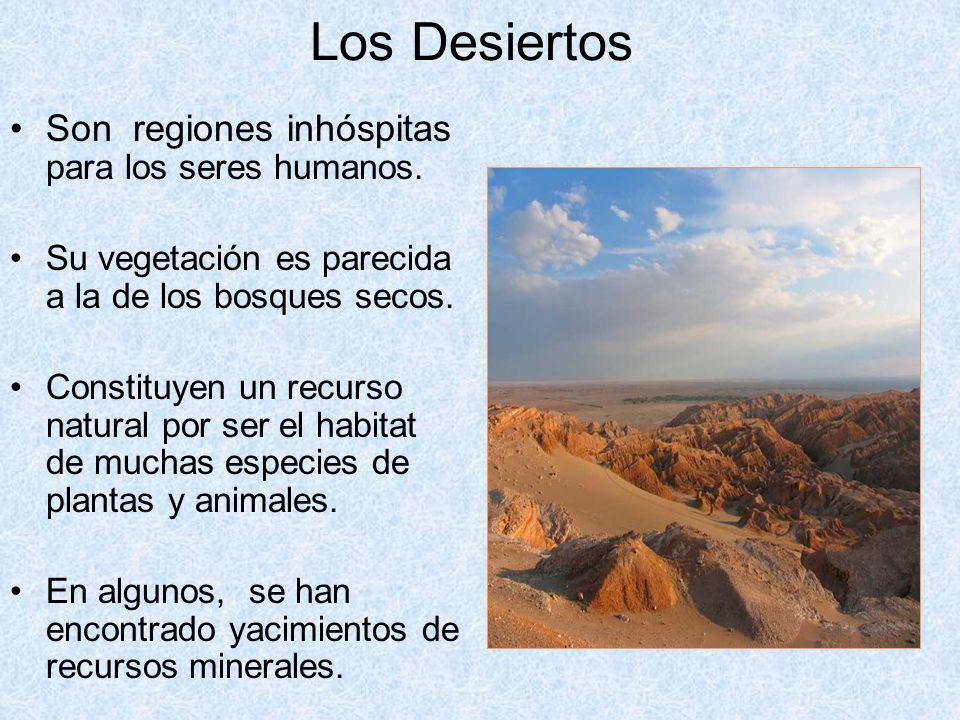 Los Desiertos Son regiones inhóspitas para los seres humanos. Su vegetación es parecida a la de los bosques secos. Constituyen un recurso natural por