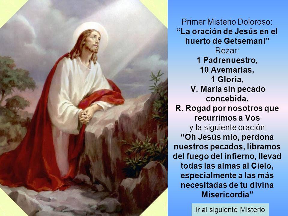 Primer Misterio Doloroso: La oración de Jesús en el huerto de Getsemaní Rezar: 1 Padrenuestro, 10 Avemarías, 1 Gloria, V. María sin pecado concebida.