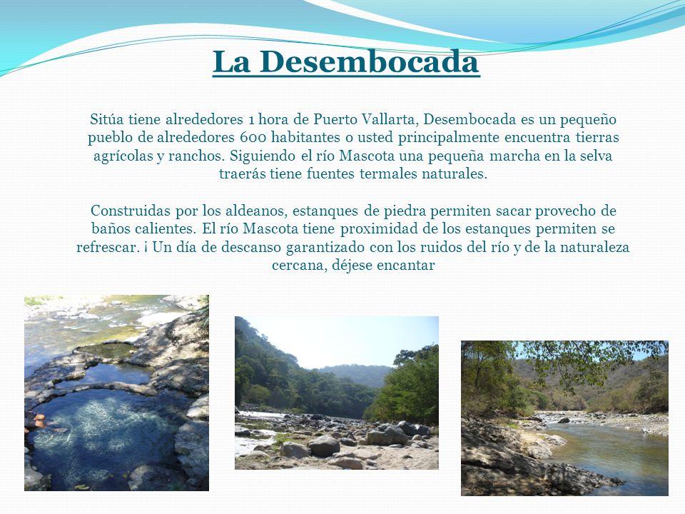 La Desembocada Sitúa tiene alrededores 1 hora de Puerto Vallarta, Desembocada es un pequeño pueblo de alrededores 600 habitantes o usted principalmente encuentra tierras agrícolas y ranchos.