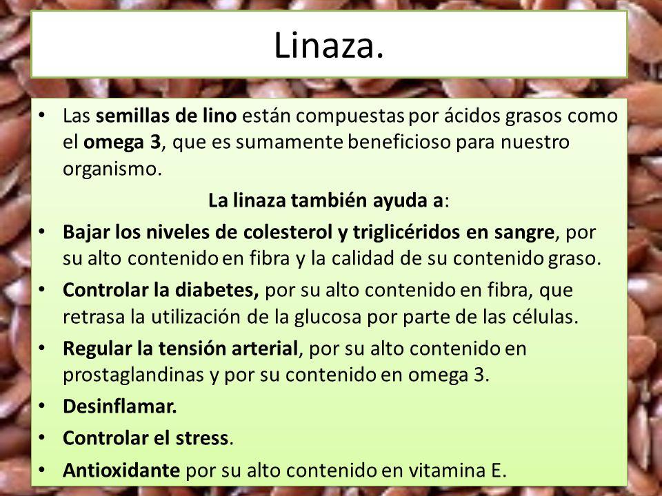 Linaza. Las semillas de lino están compuestas por ácidos grasos como el omega 3, que es sumamente beneficioso para nuestro organismo. La linaza tambié