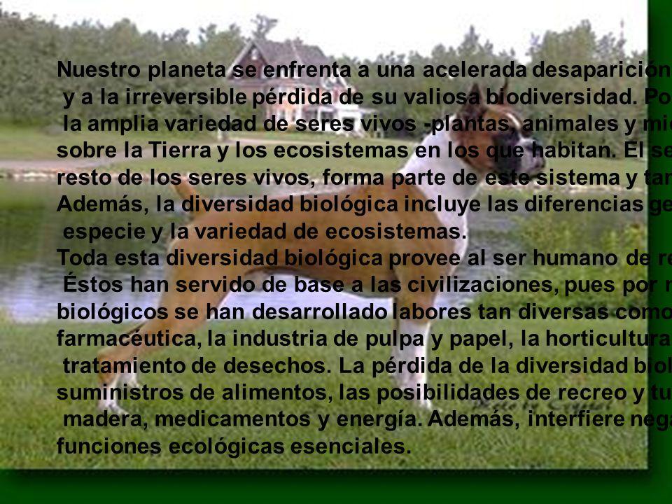 Nuestro planeta se enfrenta a una acelerada desaparición de sus ecosistemas y a la irreversible pérdida de su valiosa biodiversidad. Por diversidad en