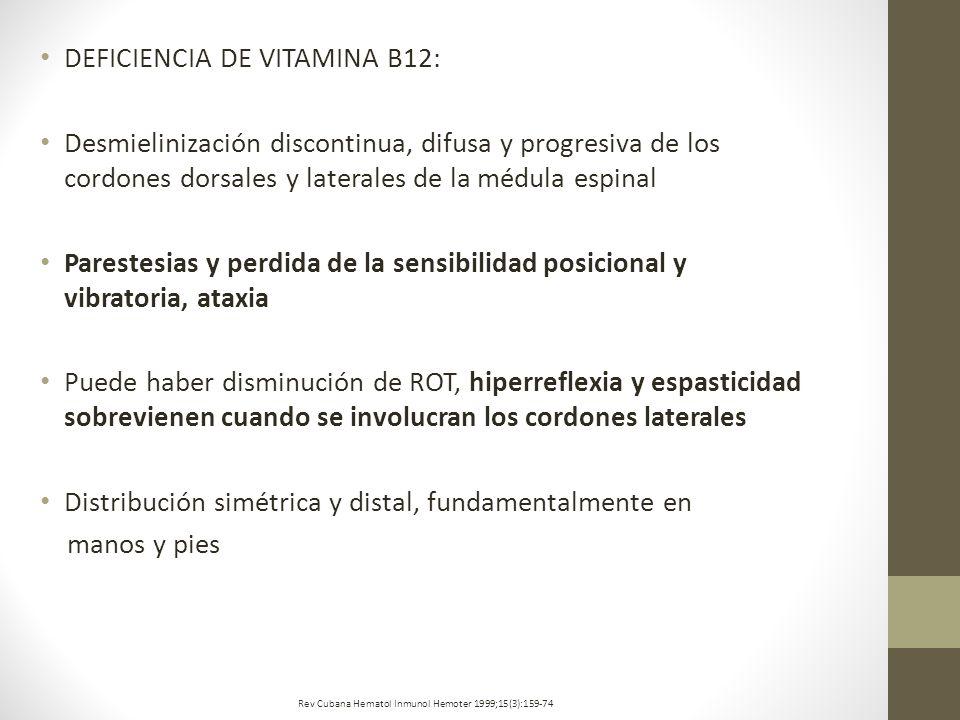 DEFICIENCIA DE VITAMINA B12: Desmielinización discontinua, difusa y progresiva de los cordones dorsales y laterales de la médula espinal Parestesias y