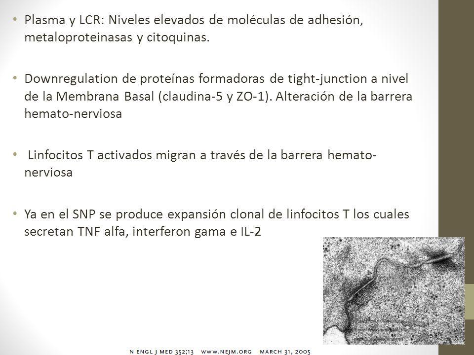 Plasma y LCR: Niveles elevados de moléculas de adhesión, metaloproteinasas y citoquinas. Downregulation de proteínas formadoras de tight-junction a ni
