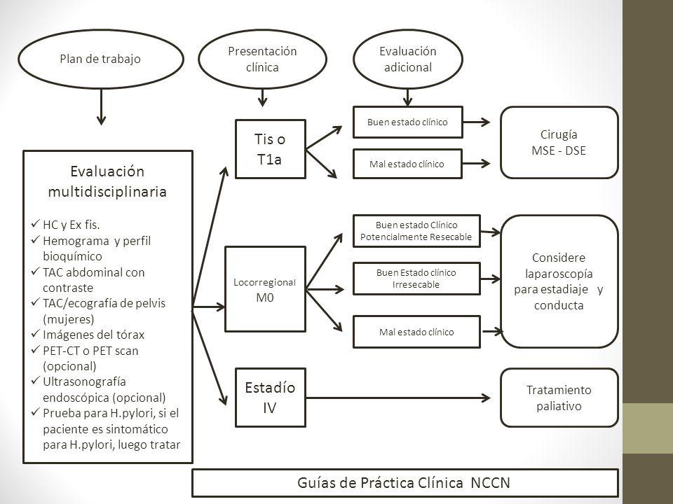 Evaluación multidisciplinaria HC y Ex fis. Hemograma y perfil bioquímico TAC abdominal con contraste TAC/ecografía de pelvis (mujeres) Imágenes del tó