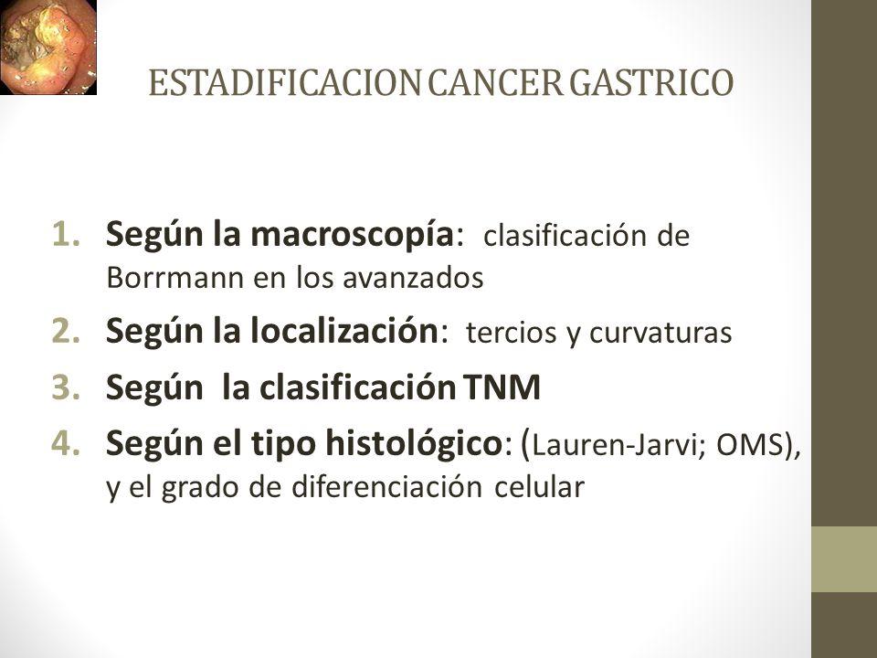 ESTADIFICACION CANCER GASTRICO 1.Según la macroscopía: clasificación de Borrmann en los avanzados 2.Según la localización: tercios y curvaturas 3.Segú