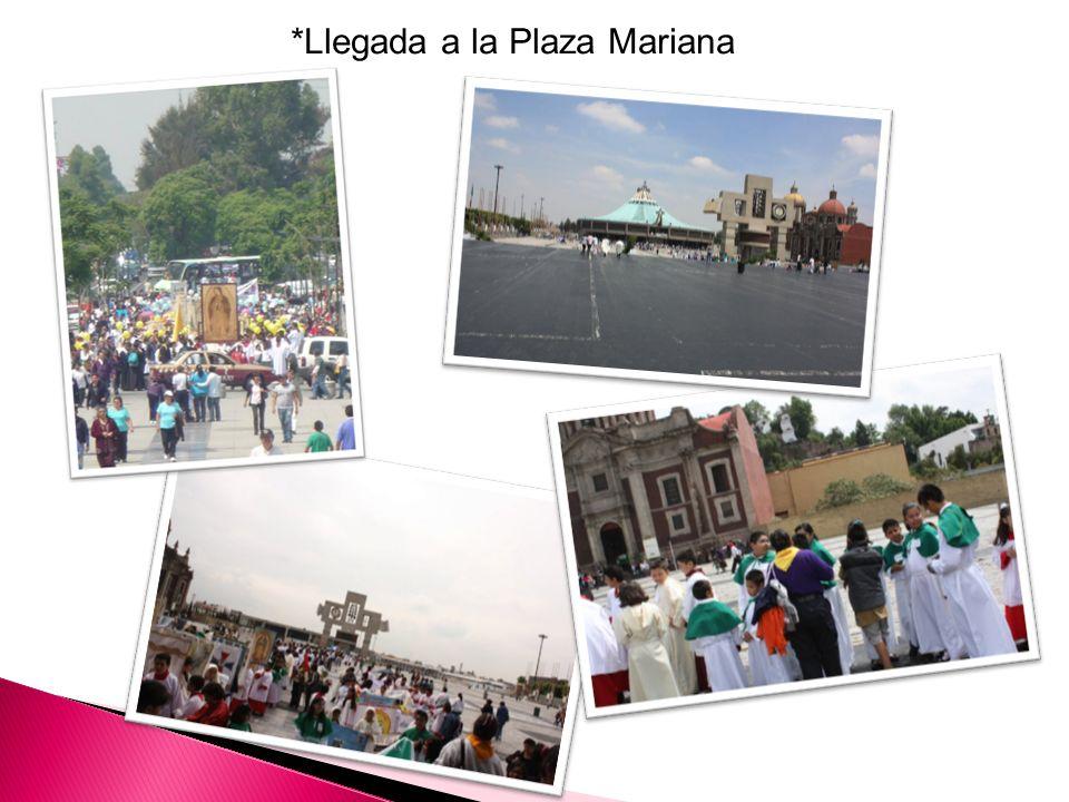 *Llegada a la Plaza Mariana