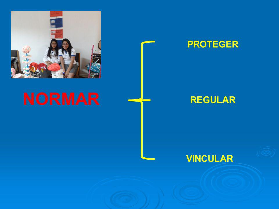 PROTEGER NORMAR VINCULAR REGULAR