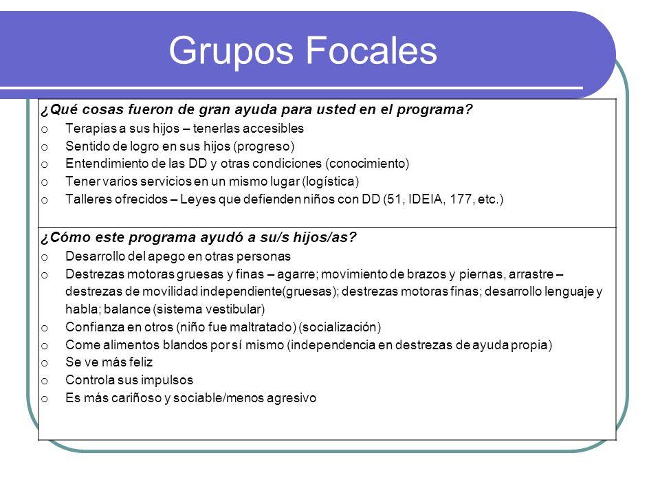 Grupos Focales ¿Qué cosas fueron de gran ayuda para usted en el programa.
