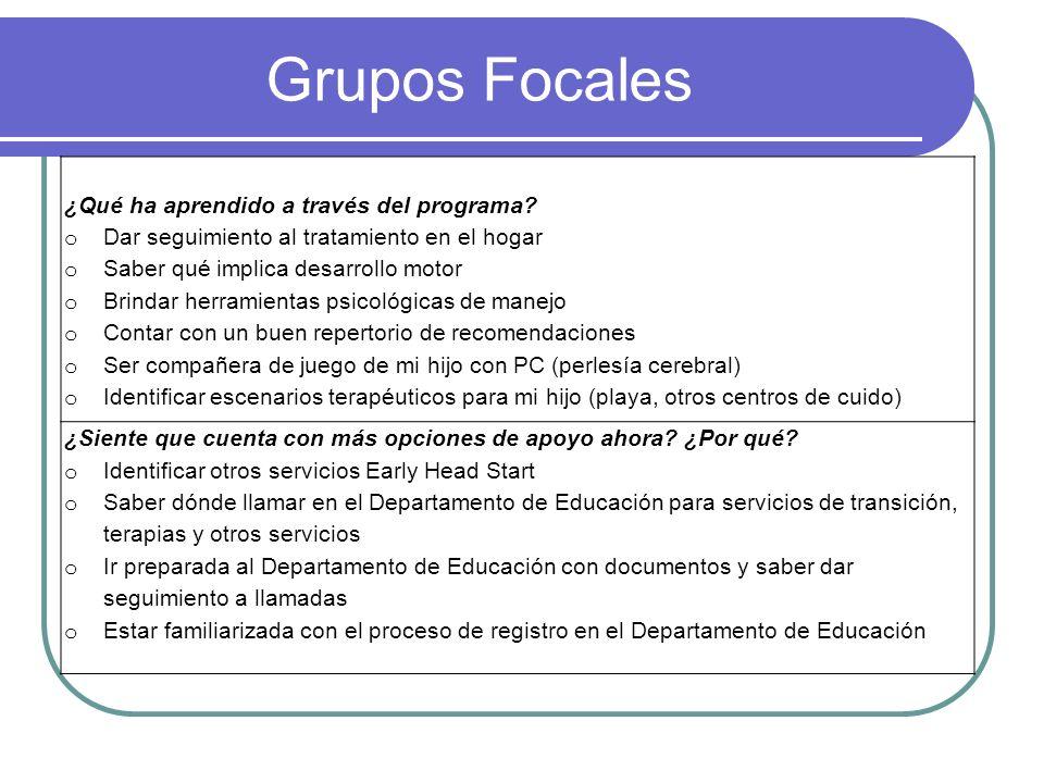 Grupos Focales ¿Qué ha aprendido a través del programa.