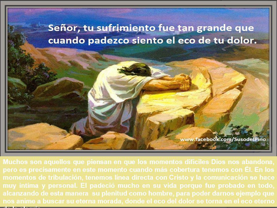 Muchos son aquellos que piensan en que los momentos difíciles Dios nos abandona, pero es precisamente en este momento cuando más cobertura tenemos con Él.