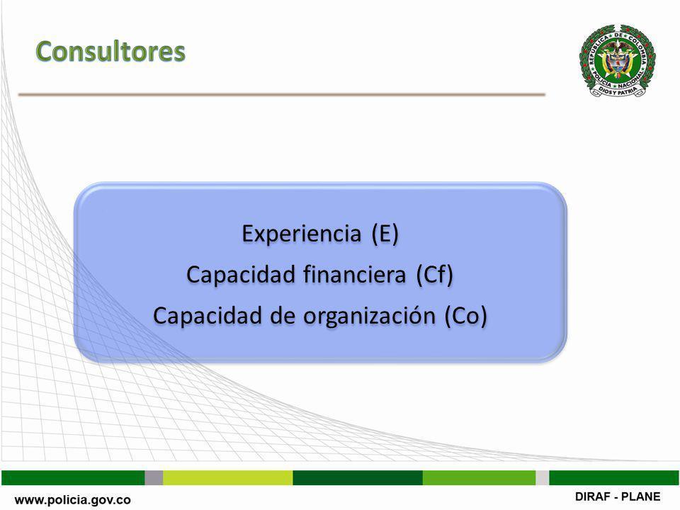 Experiencia (E) Capacidad financiera (Cf) Capacidad de organización (Co) Experiencia (E) Capacidad financiera (Cf) Capacidad de organización (Co)