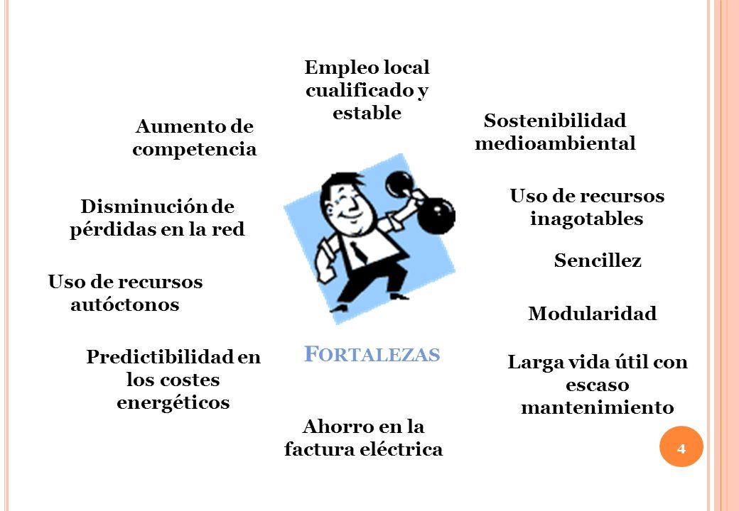 4 F ORTALEZAS Ahorro en la factura eléctrica Predictibilidad en los costes energéticos Uso de recursos autóctonos Disminución de pérdidas en la red Au