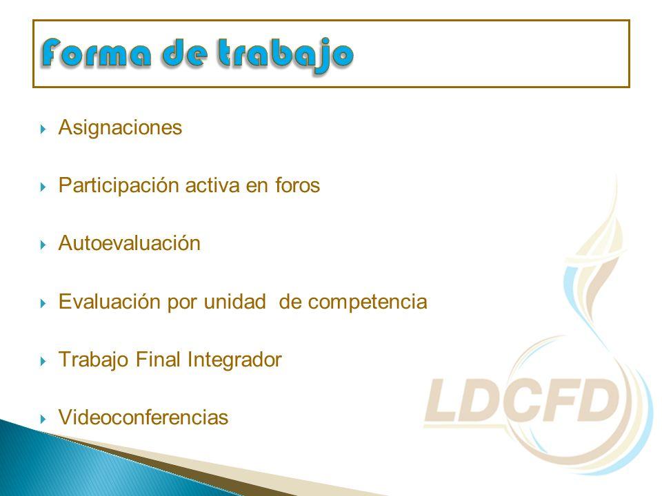 Asignaciones Participación activa en foros Autoevaluación Evaluación por unidad de competencia Trabajo Final Integrador Videoconferencias