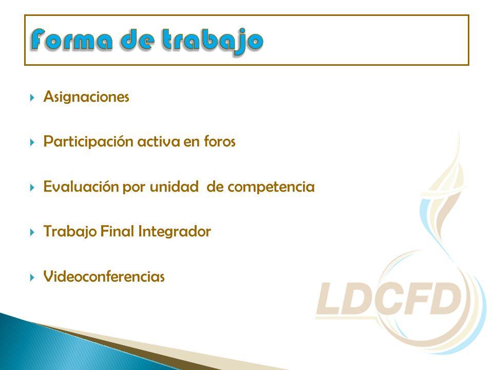 Asignaciones Participación activa en foros Evaluación por unidad de competencia Trabajo Final Integrador Videoconferencias