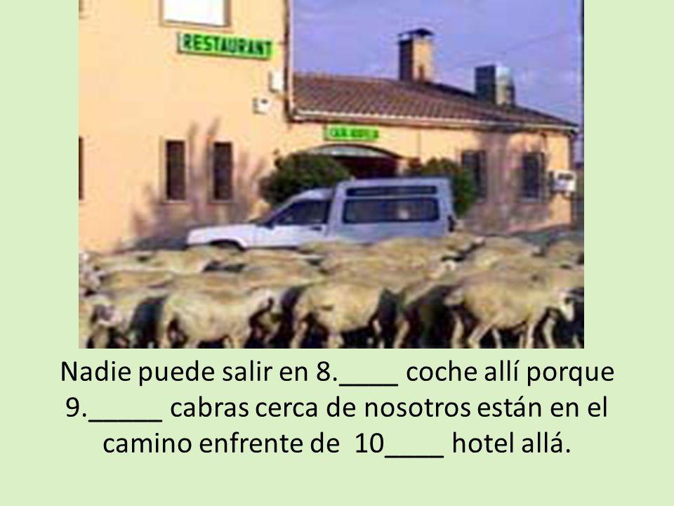 Nadie puede salir en 8.____ coche allí porque 9._____ cabras cerca de nosotros están en el camino enfrente de 10____ hotel allá.