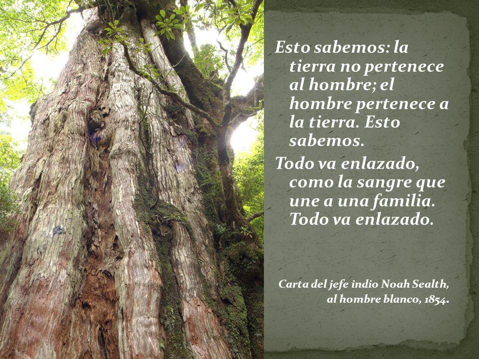 Esto sabemos: la tierra no pertenece al hombre; el hombre pertenece a la tierra.