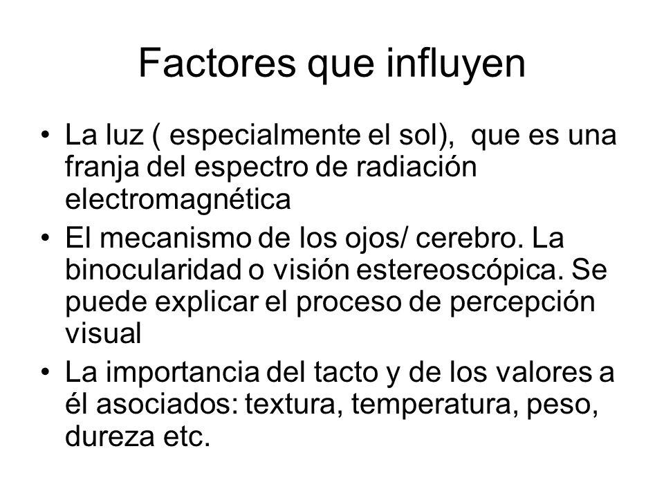 Factores que influyen La luz ( especialmente el sol), que es una franja del espectro de radiación electromagnética El mecanismo de los ojos/ cerebro.