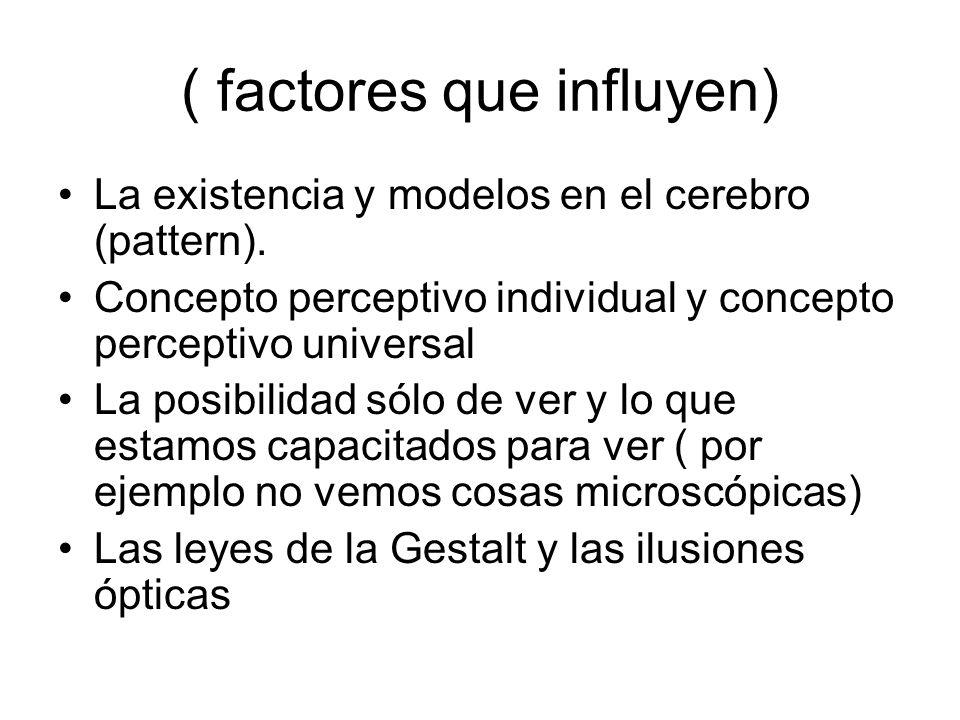 ( factores que influyen) La existencia y modelos en el cerebro (pattern). Concepto perceptivo individual y concepto perceptivo universal La posibilida